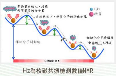 molecule-cn